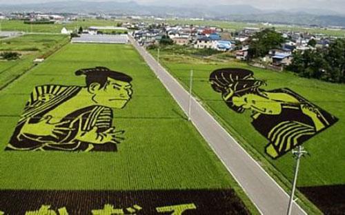 ricefieldart00