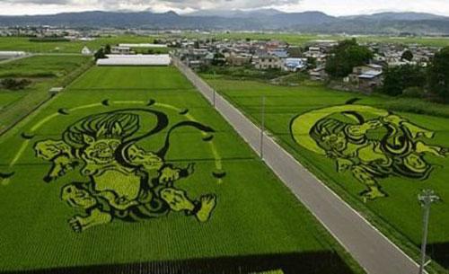 ricefieldart09